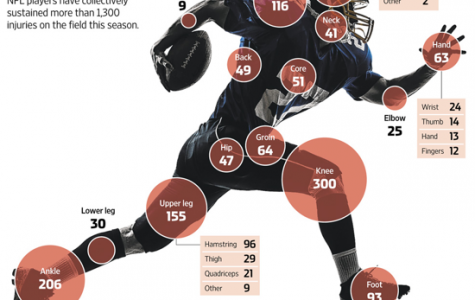 Insult to Injury: The Toll Taken by Big-Time NFL Injuries