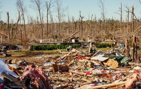 Tornado Strikes in Alabama, As People Try and Fight Back