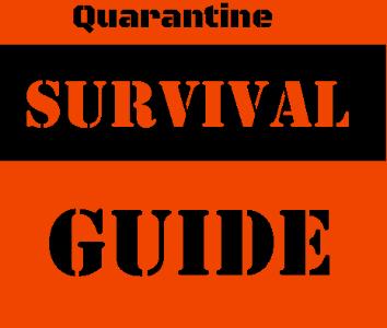How to Survive Quarantine: Teenage Edition