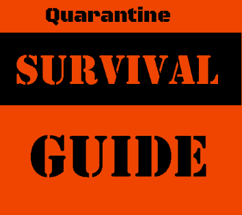 How to Survive Quarantine: Teenage Edition