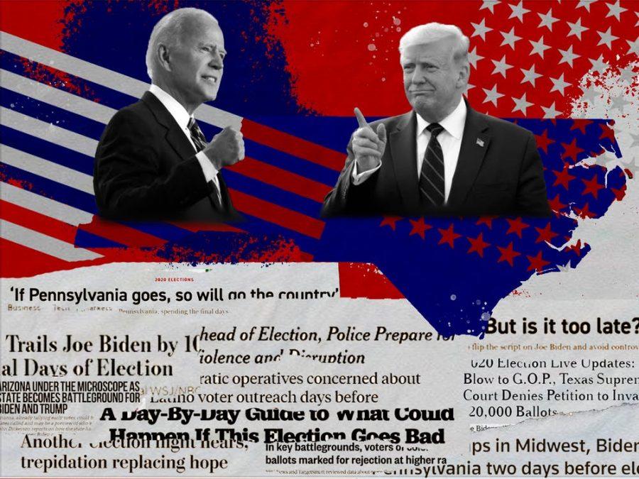A Peek Inside the 2020 Election